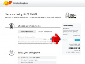 Step3 to Enter WebHostingBuzz Coupon Code
