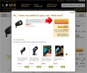 Step3 to Enter Louie Lighting Coupon Code