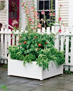 Self Watering Raised Bed Garden