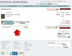 Step4 to Enter Natural Home Rugs Coupon Code