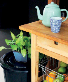 Tips to create your own compost bin and start recycling food waste