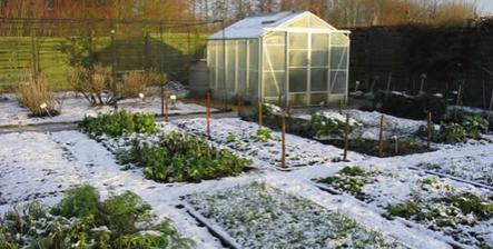 10 Garden Tasks for winter