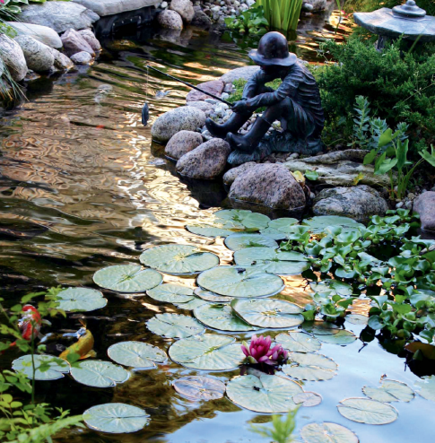 Design Pond ideas to give a focal point